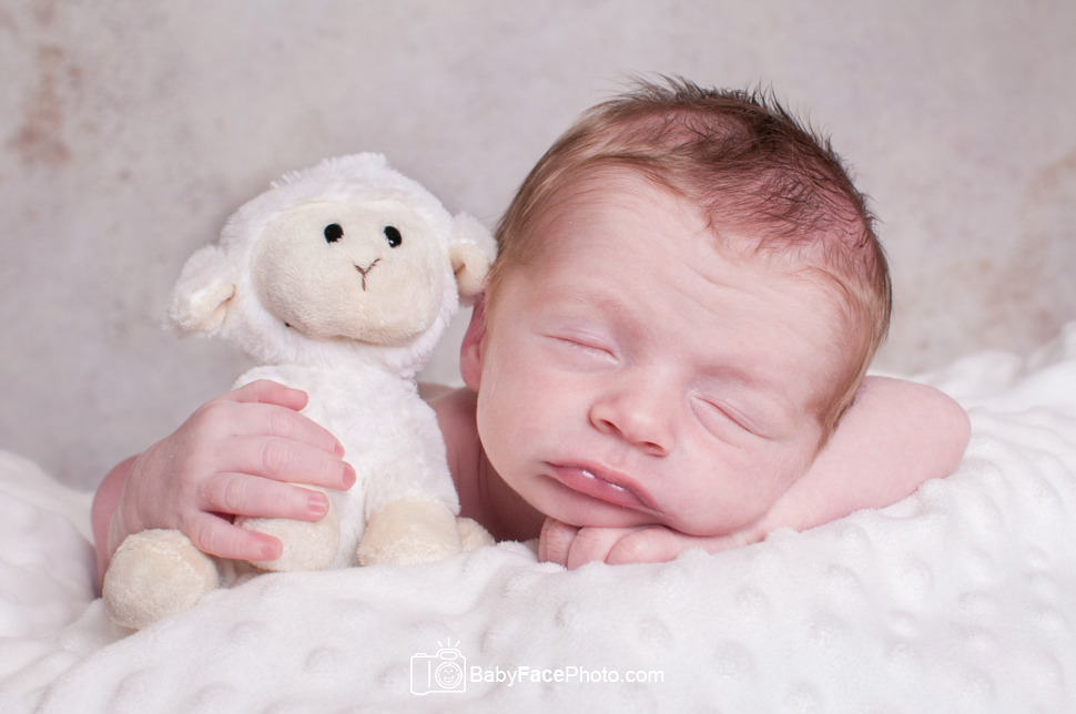 Newborn photography frederick md newborn photographer