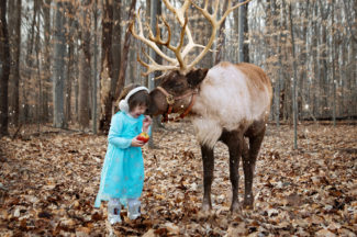 Reindeer Christmas Mini Sessions * Frederick MD Children's Photographer