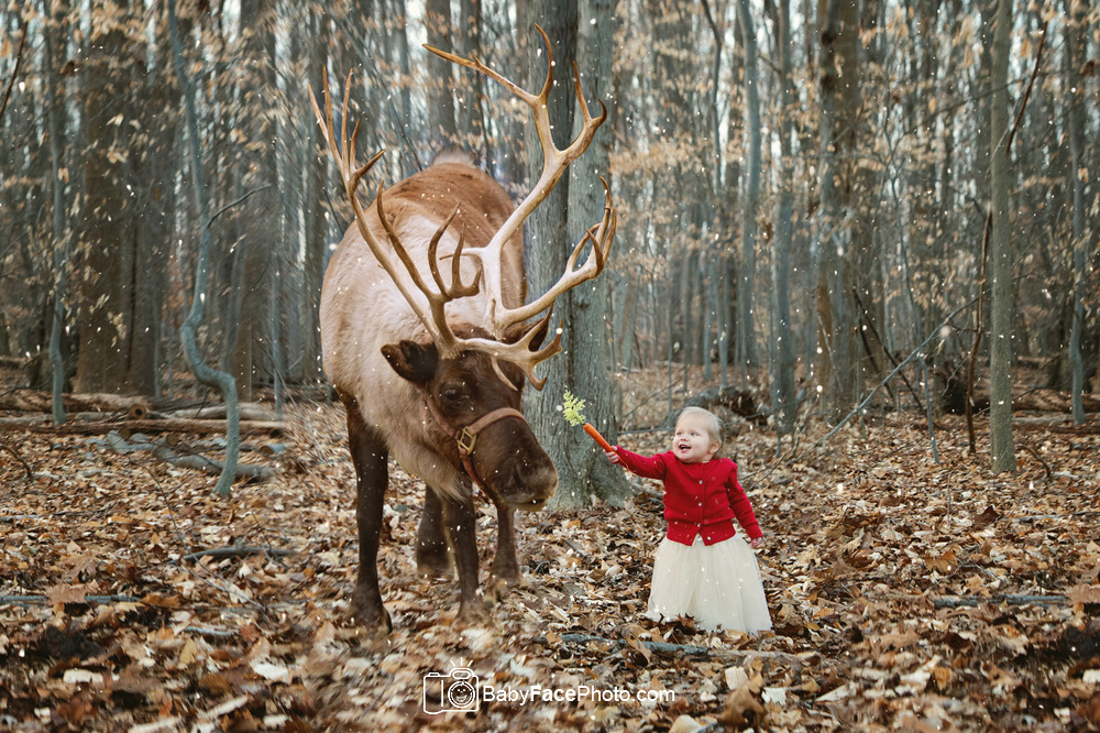 Reindeer Christmas Mini Sessions * Frederick MD Children