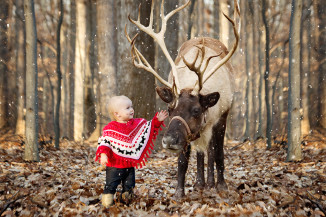 Reindeer Mini Sessions Frederick MD 1yr old
