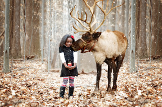 Reindeer Mini Sessions Frederick MD * Christmas Portrait Photographer