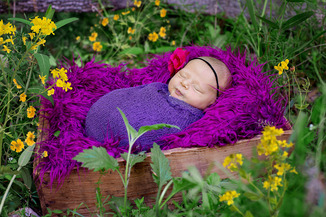 Outdoor Newborn Photography