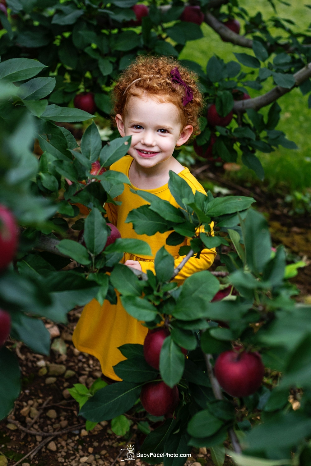 three year old girl picking apples