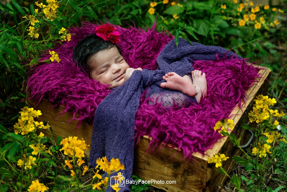 newborn baby girl in drawer outside with flowers