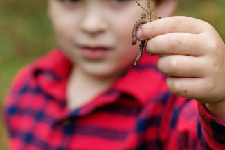 boy with worm