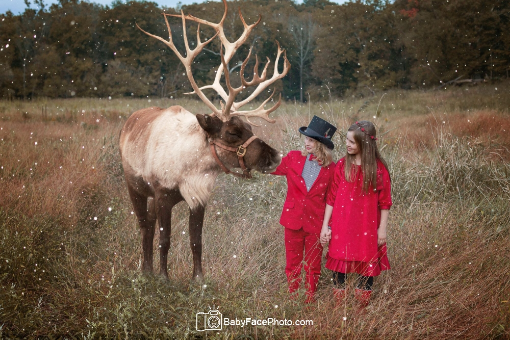 boy girl twin christmas photo reindeer