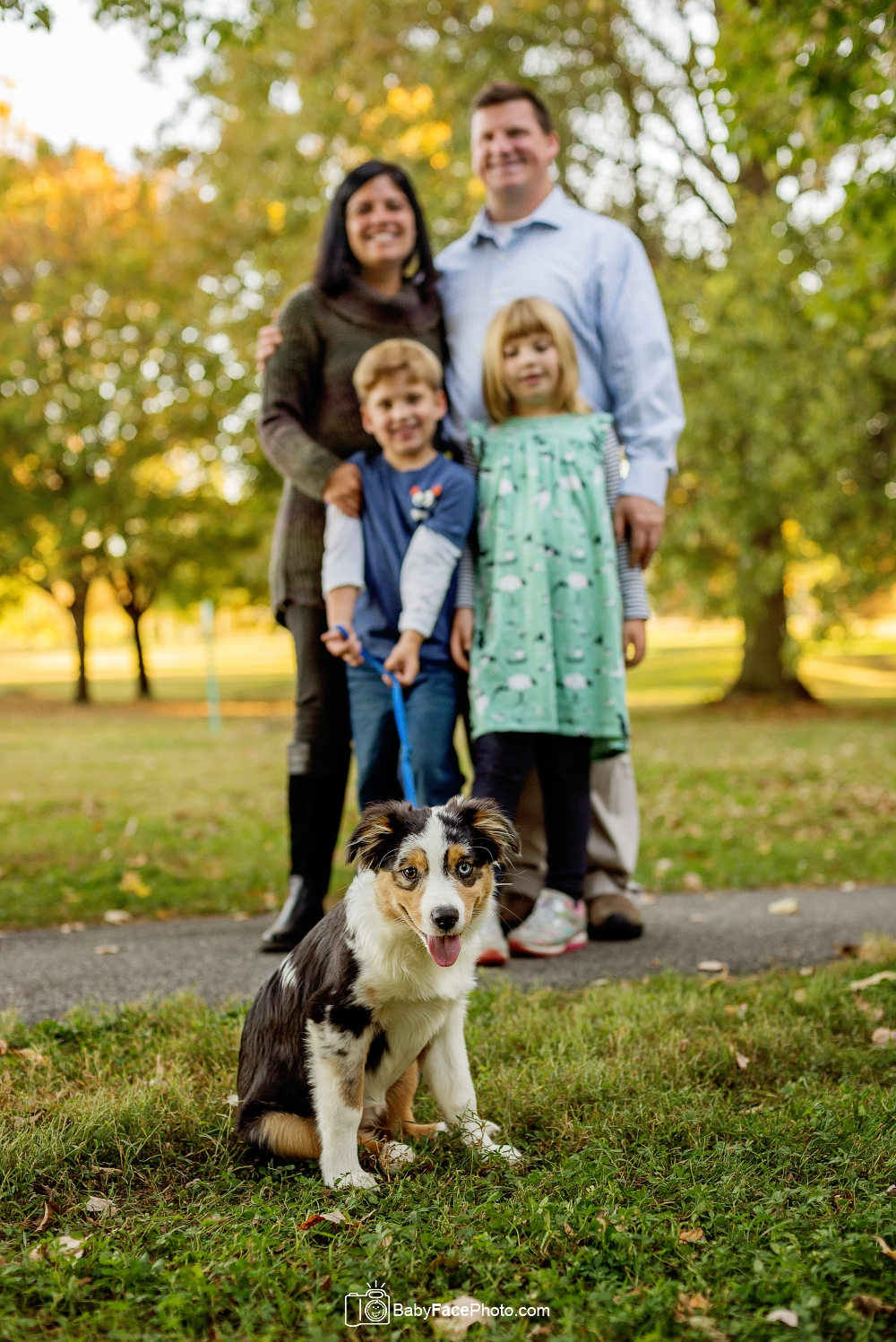 dog with family